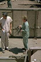 Image of M*A*S*H: Bug Out