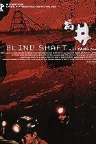 Image of Blind Shaft