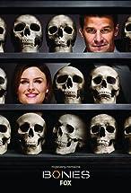 Primary image for Bones