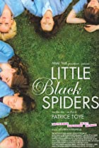 Image of Little Black Spiders