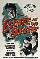 Escape in the Desert (1945) Poster