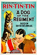 Image of A Dog of the Regiment