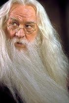 Image of Professor Albus Dumbledore
