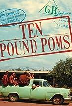 Primary image for Ten Pound Poms