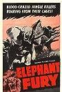 Elephant Fury