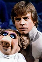Image of The Muppet Show: The Stars of Star Wars