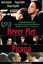 Image of Never Met Picasso