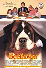 Beethoven 1992 BluRay 720p 600MB Dual Audio ( Hindi – English ) ESubs MKV