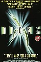Image of Ticks