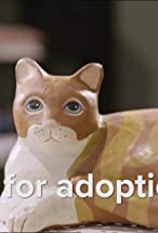 Primary image for Up for Adoption