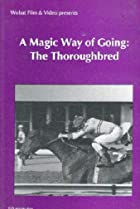 Image of Nova: A Magic Way of Going: The Story of Thoroughbreds
