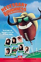 Image of Necessary Roughness