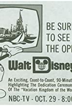 The Grand Opening of Walt Disney World