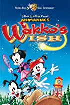 Image of Animaniacs: Wakko's Wish