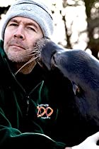 Image of Rhod Gilbert's Work Experience