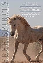 Free Spirits, Saving America's Wild Horses