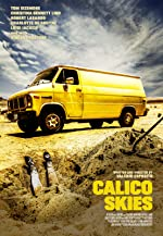 Calico Skies(2017)