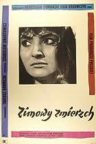 Image of Zimowy zmierzch