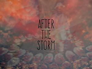 watch After the Storm full movie 720