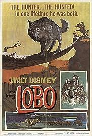 The Legend of Lobo(1962) Poster - Movie Forum, Cast, Reviews