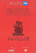 XVII premios Goya