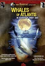 Primary image for Whales of Atlantis: In Search of Moby Dick