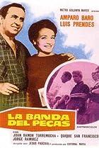 Image of La banda del Pecas