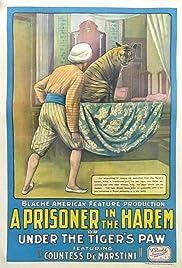A Prisoner in the Harem Poster