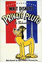 Image of Private Pluto