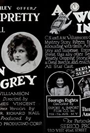 A Woman in Grey Poster