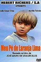 Image of Meu Pé de Laranja-Lima
