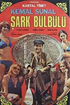 Image of Sark Bülbülü