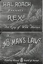 Image of Rex the Wonder Horse