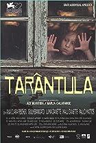 Image of Tarântula