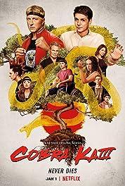 Cobra Kai - Season 3 poster