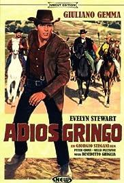 Adiós gringo Poster