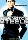 """Remington Steele: Steeling the Show (#1.11)"""