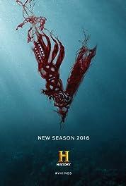 Vikings (TV Series 2013– ) HDTV 480p