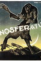 Image of Nosferatu, eine Symphonie des Grauens