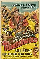 Image of Tumbleweed