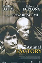 Image of Animal Factory
