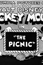 The Picnic (1930) Poster