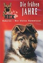 Baby Rex - Der kleine Kommissar