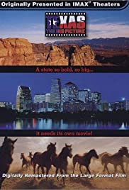 Texas: The Big Picture Poster