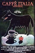 Caffe Italia Montréal (1985) Poster
