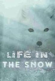 Life in the Snow / Живот в снега (2016)