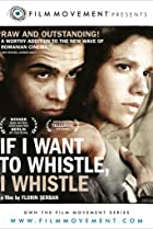 Image of If I Want to Whistle, I Whistle