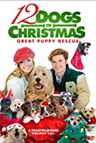Image of 12 Dogs of Christmas: Great Puppy Rescue