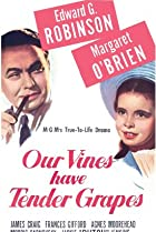 Image of Our Vines Have Tender Grapes