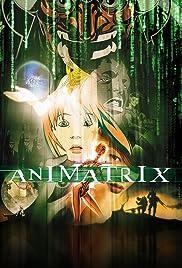 The Animatrix Poster